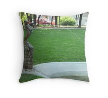 Watering fountain Throw Pillow