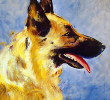 'Tashi' German Shepherd by Kelly Telfer