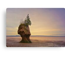 Hopewell Rocks New Brunswick Canada Canvas Print