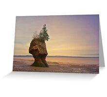 Hopewell Rocks New Brunswick Canada Greeting Card