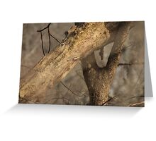 Tree Mating Caught in the Act Greeting Card