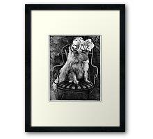 American Werewolf in Australia. Framed Print