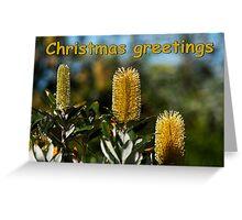 Bush Candles Greeting Card