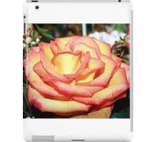 WINTERS PEACH iPad Case/Skin