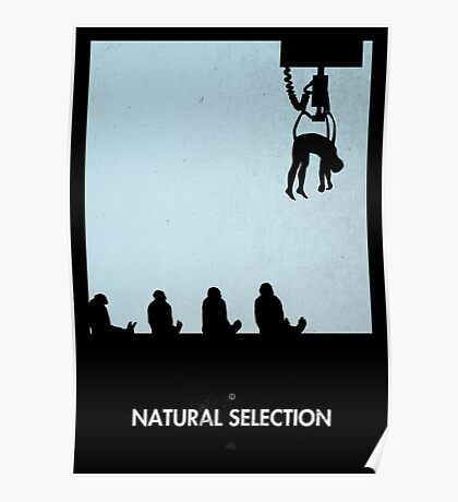 99 Steps of Progress - Natural selection Poster