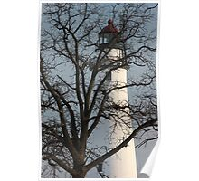 Light House through Trees Poster