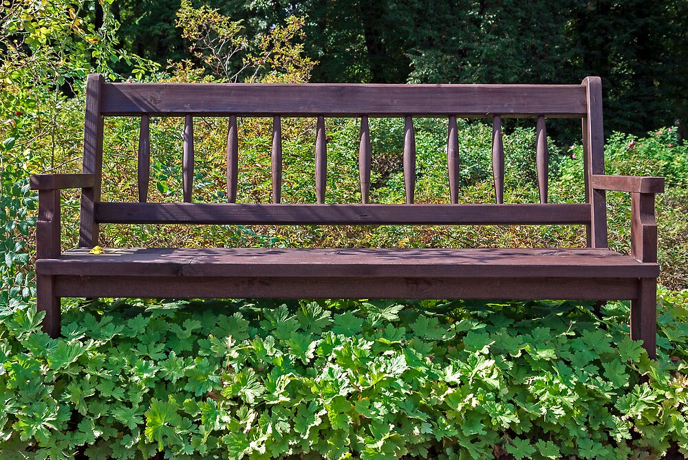 Bench overgrown with weeds by Cebas