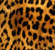 Leopard Pattern by Vantesx