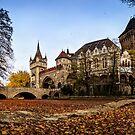 Vajdahunyad Castle in Budapest by Zoltán Duray