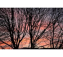 Sunset Silhouettes Photographic Print