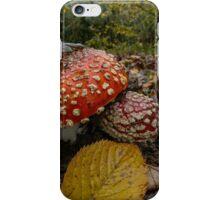 Wild Mushrooms #443TR iPhone Case/Skin
