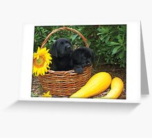 I really hope that yellow thing isn't dinner. Greeting Card