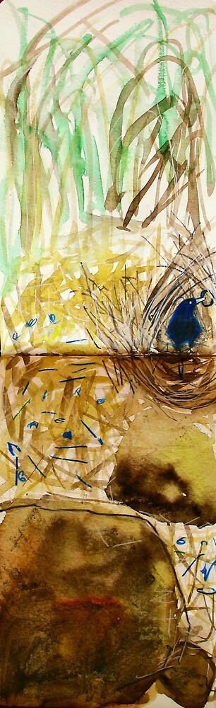 bower bird and bower by donnamalone