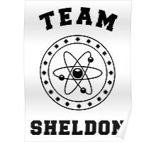 TBBT - Team Sheldon Poster