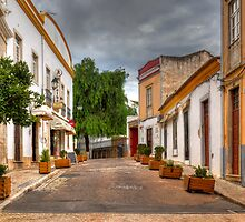 Loule by manateevoyager