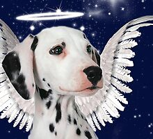 Dalmatian Angel Card by Doreen Erhardt
