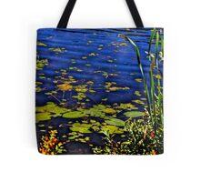 Beaver Dam Pond Tote Bag