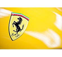 Prancing Horse Photographic Print