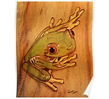 PYROGRAPHY: Tree Frog Poster