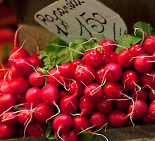 Bright Red Radishes by phil decocco