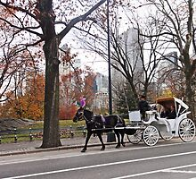 Fall carriage by Eugenia Gorac