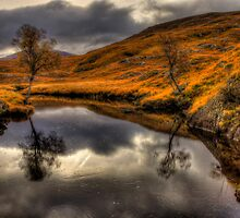 The Pool Of Autumn by derekbeattie