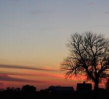 Farmstead Sunset by SolasandScath