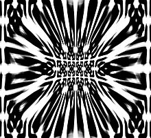 Black and White Fabric Pattern by haymelter