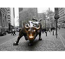 Wall Street Bull Photographic Print