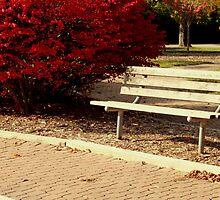 Bench Warmers by SolasandScath
