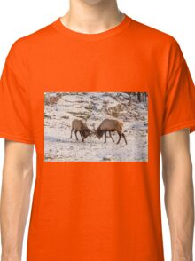 Elk in a fight Classic T-Shirt