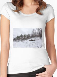 Winter in Eastern Canada Women's Fitted Scoop T-Shirt
