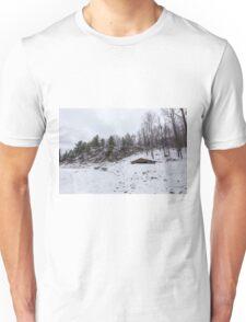 Winter in Eastern Canada Unisex T-Shirt
