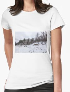 Winter in Eastern Canada Womens Fitted T-Shirt