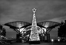 Christmas Tree by Pene Stevens