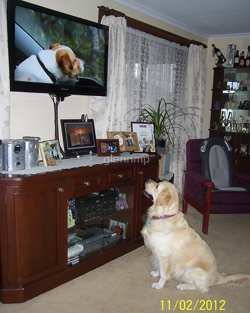 How Much Is That Doggy On The Big Screen - Woof Woof! by glennmp