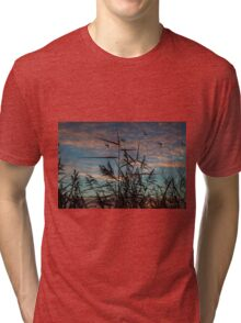 wild grass with sunrise Tri-blend T-Shirt