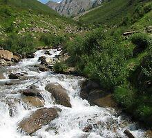 Austrian River by kira22