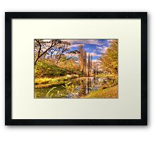 Autumn Leaves - Rockley NSW - The HDR Experience Framed Print