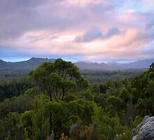 The Wild South West by Cameron B