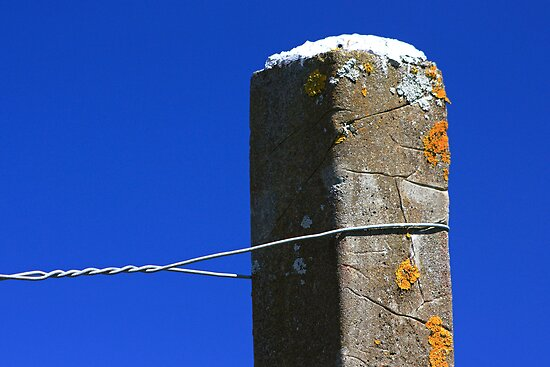 Post and wire by Duncan Cunningham