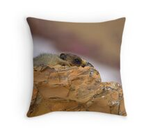 Be the Rock Throw Pillow