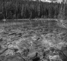 Rocky Cobblestones - 1st Lake (BW) by JamesA1
