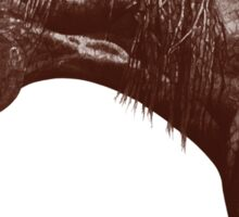 Red Frontier Thoroughbred Twigabelle Graphite Drawing Sticker