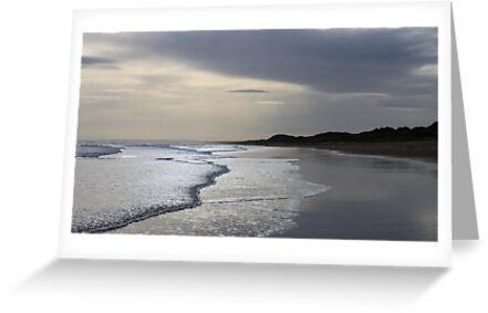 Forvie Sands at dusk by beavo