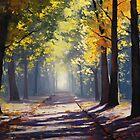 Road Shadows by Graham Gercken