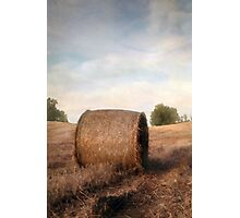 Harvest Time Photographic Print
