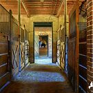 THE STABLES by TJ Baccari Photography