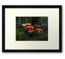 The Reds Are Here Framed Print