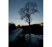 Holme Fen Drove, November, dusk Photographic Print